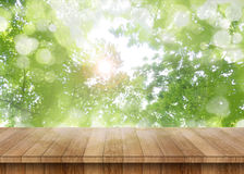 Wood table perspective with green leaf Royalty Free Stock Photo