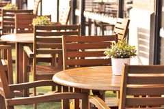 Wood table, plant  arranged in cafe. Royalty Free Stock Photo