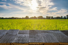 Wood table for product montage and display with rice field sunli Stock Image
