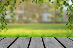 Wood table top with blur green background with trees in the park with vine frame stock photography