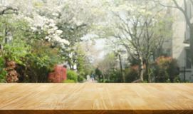Wood table top on blur sakura flower in garden background.nature Royalty Free Stock Photos