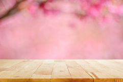 Wood table top on blurred background of pink cherry blossom flowers. Can used for display or montage your products Royalty Free Stock Photo