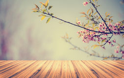 Wood table top on Flower background Royalty Free Stock Photo