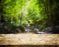 Wood Table top and forest blurred Royalty Free Stock Image