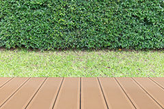 Wood table top in the garden. Wood table top is in the garden Royalty Free Stock Photos