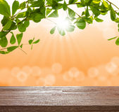 Wood table top on green tree with blurred light bokeh and sunray Royalty Free Stock Images