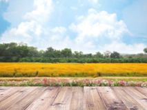 Wood table top over colorful flower meadow stock photography