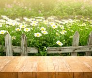 Wood table top on white flower with fence in garden background