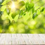 Wood table top or wooden terrace royalty free stock photo