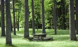 Wood table in the wood. Ett bord nära en väg där man kan stanna och äta. En vanlig syn i Sverige Stock Image