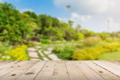 Wood tabletop and garden blurred with sunlight Stock Photos