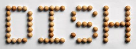 Wood Tack Word Art `Dish` stock photography