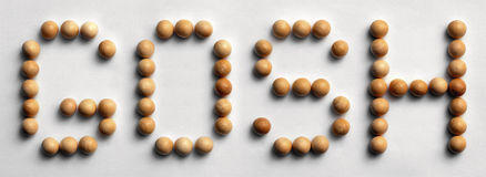 Wood Tack Word Art `Gosh` Stock Photography