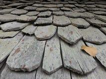 Wood tak Royaltyfri Fotografi