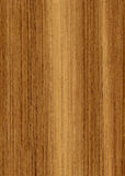 Wood teak texture Stock Photo