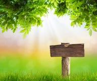 Wood tecken med gräs Royaltyfri Bild