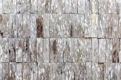 Wood tegelstenvägg Royaltyfri Foto
