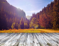 Wood terrace view on forest mountains Stock Photos