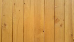 Wood textur 01 Royaltyfri Foto