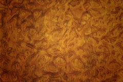 Wood textur Royaltyfri Foto