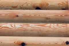 Wood textur. Arkivfoto