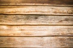 Wood textur Arkivbild