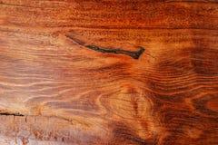 Wood textur- eller träbakgrund trä för inre yttre garnering och industriell konstruktionsbegreppsdesign Arkivfoton
