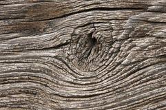 Wood textur för bakgrund Arkivfoton