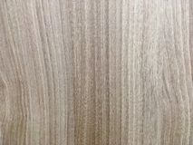 Wood textur för bakgrund, Arkivfoto