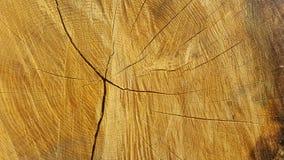 Wood textur för spricka abstrakt textur Arkivfoton