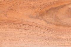Wood textur, materielfoto, gammalt bakgrundsträd Royaltyfri Bild