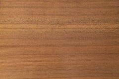 Wood textur med den naturliga modellen royaltyfria bilder