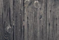 Wood textur med spikar Arkivbild