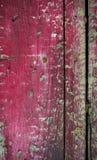Wood textur med sprucken målarfärg Royaltyfria Bilder