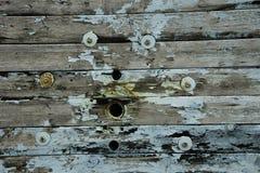 Wood textur med Teal Accents Arkivbild