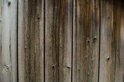 Wood textur, naturlig materiell design för inre och yttersida, G Royaltyfri Foto