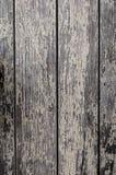 Wood textur och bakgrund Royaltyfri Bild