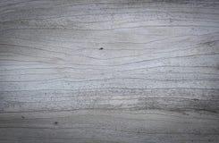 wood textur- och träbakgrund Arkivfoton
