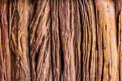 Wood textur, Wood yttersida gammala paneler för bakgrund Arkivbilder