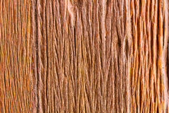 Wood textur, Wood yttersida gammala paneler för bakgrund Arkivfoto