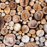 Wood texturbakgrund Royaltyfria Bilder