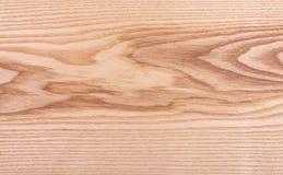 Wood texturbakgrund, askafanér Royaltyfri Fotografi