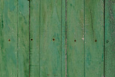 Wood texturbakgrund för grön pastale Arkivbild
