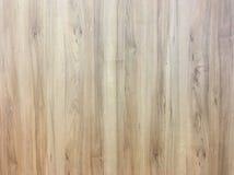Wood texturbakgrund, ljus ek av ridit ut bekymrat lantligt trä med urblekt textur för woodgrain för fernissamålarfärgvisning hard royaltyfri foto