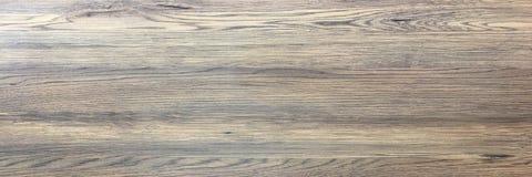 Wood texturbakgrund, ljus ek av ridit ut bekymrat lantligt trä med urblekt textur för woodgrain för fernissamålarfärgvisning hard arkivfoton
