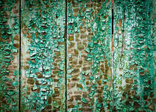 Wood texturbakgrund med den naturliga modellen Royaltyfria Bilder