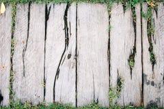 Wood texturbakgrund med grönt gräs Arkivbilder