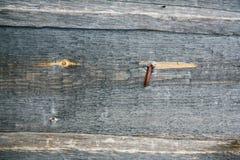 Wood texturbakgrund, träbrädekorn, randiga plankor för gammalt golv Royaltyfri Foto