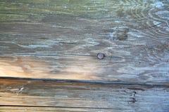 Wood texturbakgrund, träbrädekorn, randiga plankor för gammalt golv Fotografering för Bildbyråer