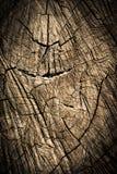 Wood texturbakgrund/Wood textur Arkivfoto